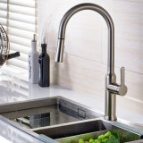 Il rubinetto spazzolato nichel del dispersore di cucina di Flg con estrae la funzione