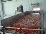 Het Sap die van de Mango van de Lopende band van het Vruchtesap van de Apparatuur van de Productie van het Vruchtesap De Installatie van de Lijn van de Verwerking van het Sap van de Mango van de Machine maken