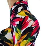 Amazônia Venda quente sai Novo Exercício Impressão roupas calças de ioga Perneiras Mulheres