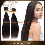 Волосы 100% бразильянина девственницы оптовой продажи