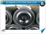 Rouleau en acier Wareproof utilisés dans le convoyeur à courroie