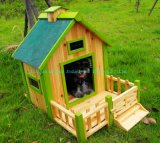 Chambre de chien (QZD1005)