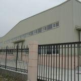 Taller profesional de la estructura de acero del surtidor (SSW-013)