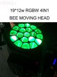 Горячие продавая глаза пчел 19PCS двигая головной свет этапа (HL-003BM)