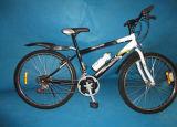 자전거 (M-008)