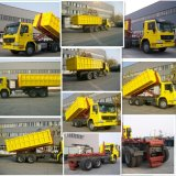 Camion di immondizia resistenti di Sinotruk con l'elevatore internazionale dell'amo di marca