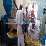 as sementes do girassol 10-50td, algodão semeiam a linha vegetal da produção de petróleo