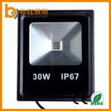 광저우 중국 공장 3000-6500k 정원 옥외 RGB 호리호리한 30W LED 투광램프