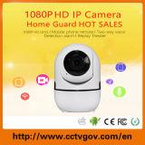 Camera van het Toezicht PTZ van de Veiligheid van kabeltelevisie van WiFi IP van het Web de Mini Draadloze Infrarode