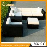 Moderne speisende Freizeit-Rattan-Weidenaufenthaltsraum-Kombinations-Sofa-gesetzte im Freiengarten-Möbel