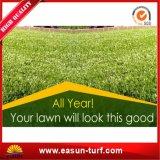 يضع مجال خضراء تمييه عشب سجادة بلاستيكيّة لعبة أرض عشب اللون الأخضر
