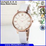 Klassische Geschäfts-Quarz-Leder-Uhr-Legierungs-Uhr-Uhr (Wy-107D)
