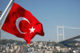 La bandierina su ordinazione Sunproof della Turchia della bandiera nazionale ed impermeabilizza