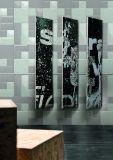 Grau 4X8inch/10X20cm glasierte glatte abgeschrägte keramische Wand-Untergrundbahn-Fliese-Badezimmer-/Küche-Dekoration