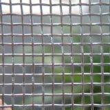 Electro y galvanizado en caliente de malla de alambre cuadrado