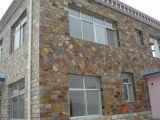 La pietra nera poco costosa dell'ardesia di tetto dell'ardesia impiallaccia la pietra della coltura del rivestimento della parete