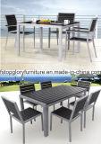 Het dineren OpenluchtMeubilair met Lijst en Stoelen (tg-1609)