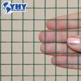 Qualität galvanisierte geschweißten Maschendraht 25mm * 25mm