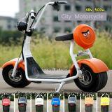 良質の電気バイク都市ココヤシのオートバイのスクーター