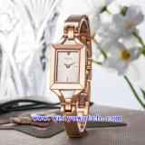 Reloj vendedor caliente del acero inoxidable de la aleación del OEM del reloj del reloj (WY-040B)