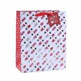 Do presente atual dos cosméticos do coração do dia do Valentim sacos de papel de vestuário