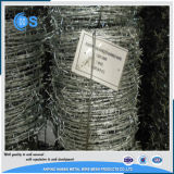 Rete fissa del filo galvanizzata calibro caldo di vendita 12