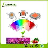 Ventes directes en usine 10W 50W 70W 100W COB Puce LED