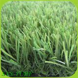[ب] [مونوفيلمنت] & مغزول مجعّد عشب اصطناعيّة لأنّ حديقة