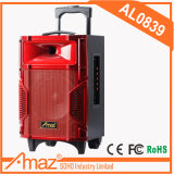 Производитель Teimeisheng портативная АС из Гуанчжоу