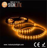 3 de Flexibele LEIDENE 12W/M van de Garantie SMD2835 van de jaar Lichten van de Strook
