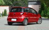 Spitzenverkaufs-elektrisches Auto mit gutem Zustand