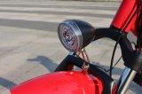 Neumático Fat plegable de 20 pulgadas 500W E Bike