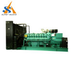 専門家パーキンズエンジンの発電機が付いている700のKwのディーゼル発電機