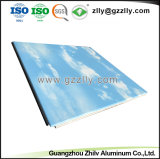 ISOの証明の中国の工場によって供給されるカスタマイズされた重合体アルミニウム天井