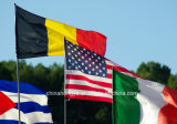 De grote Nationale Vlag van de Vlag met Goedgekeurd SGS TUV