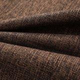 Los tipos del color de la diferencia de tela del sofá para Europa