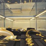 LED-steifer Schrank-Schaukasten, der Handelslicht beleuchtet