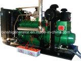 De Looppas van de Reeks van de Generator van het gas op CNG, LNG, LPG, Biogas