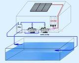 DC Pompes de piscine solaire avec onduleur