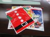 El regalo promocional impermeable de la impresión de encargo HDPE/LDPE se divierte bolsos del morral de la gimnasia