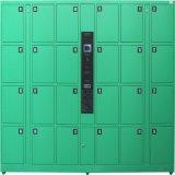 Armadio di memoria elettronico con la serratura sicura