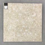 De de Italiaanse Vloer van de Ceramiektegel van het Ontwerp en Tegel van de Muur (ter601-BEIGE)