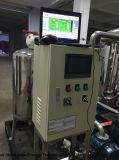 Het Systeem van de Ontzwaveling van het biogas