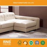 sofà moderno della mobilia del salone 766b