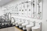 Siphon en céramique de salle de bains vidant la cuvette de toilette d'une seule pièce