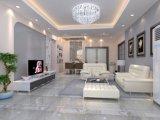 Piso de mármol y paredes Florring azulejos de porcelana a precios