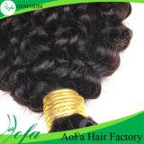 A alta qualidade Brazillian da venda por atacado da extensão do cabelo humano afrouxa Curly