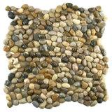 أصفر حجارة قرميد حصاة زخرفة