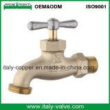OEM&ODMの品質の真鍮の鋳造の蛇口(AV2017)
