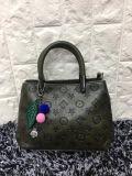 Sacchetto di promozione della signora Handbaghot Sell Casual Bag del progettista di modo Nizza (WDL0104)